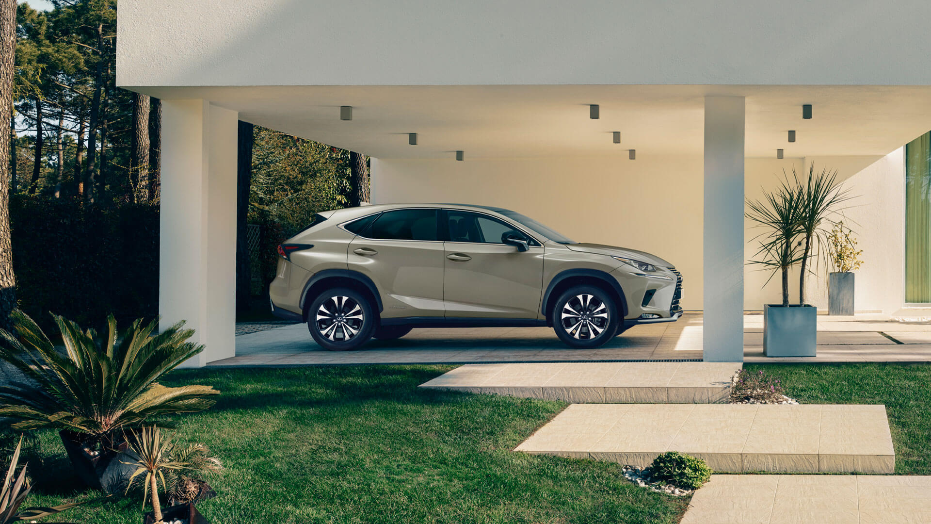 2021 lexus nx black line edition gallery 03