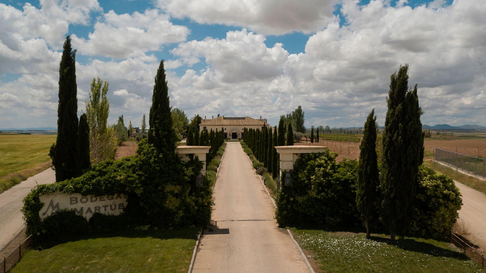 Imagen del vino de Bodegas Martúe