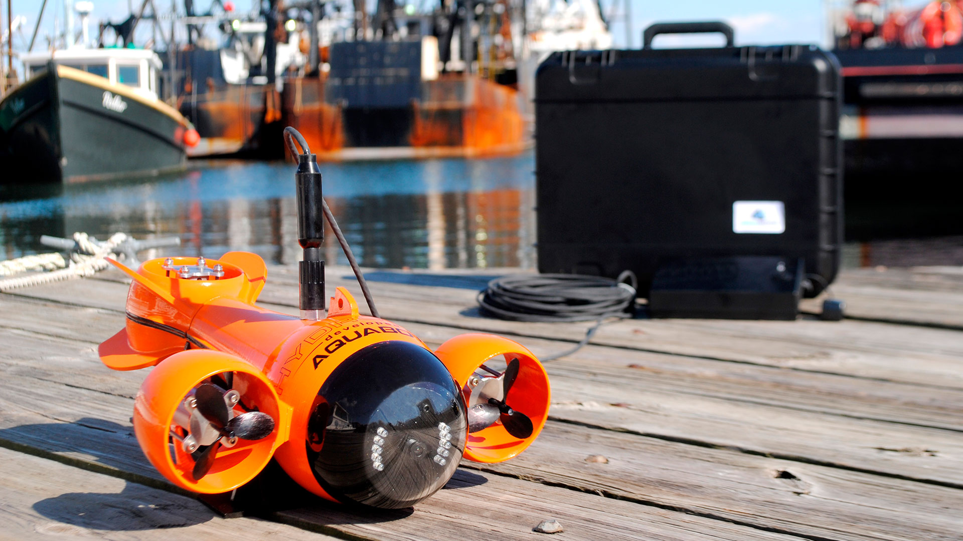 Descubre los fondos marinos hero asset