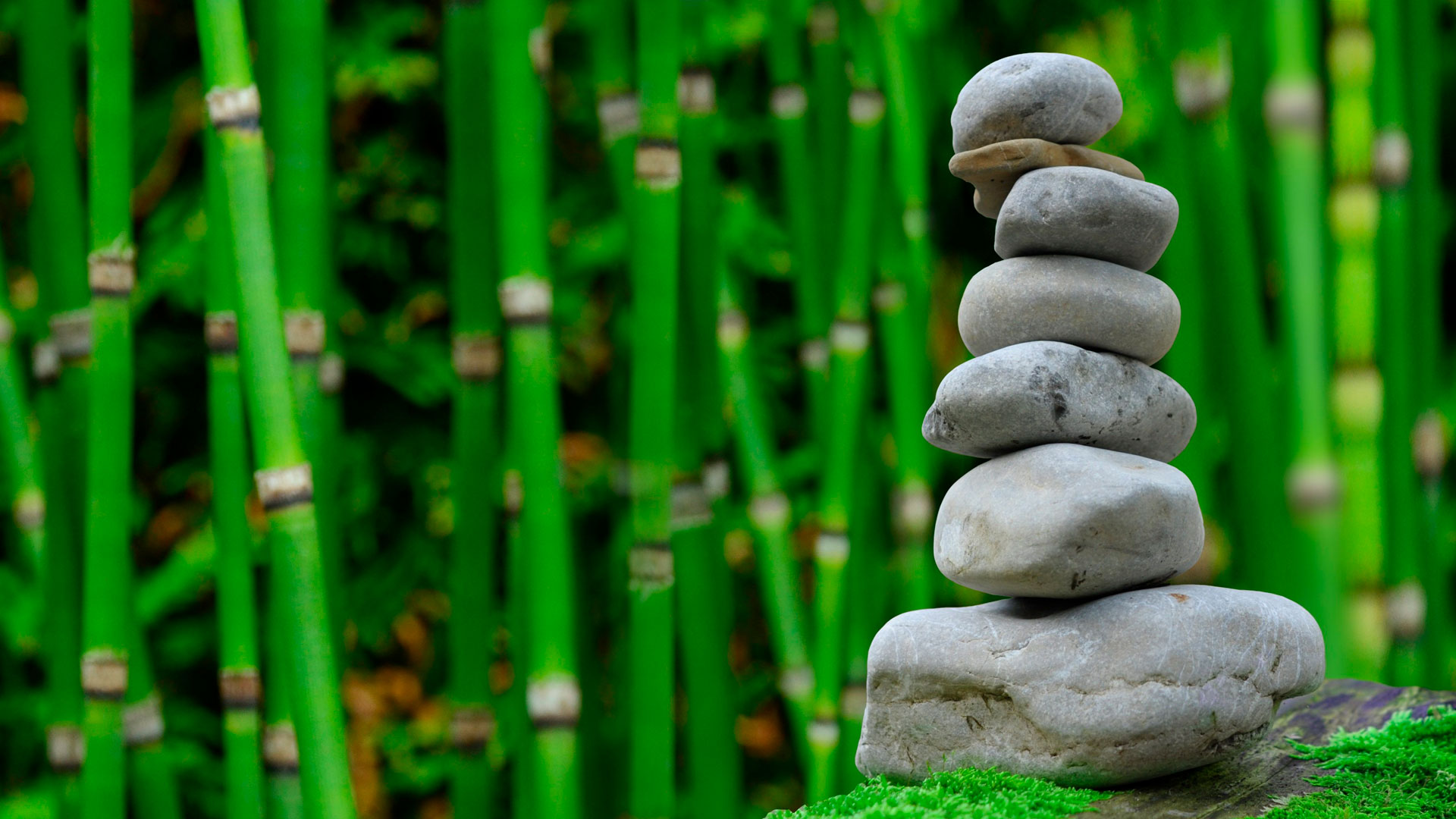 Beneficios de la meditación diaria hero asset