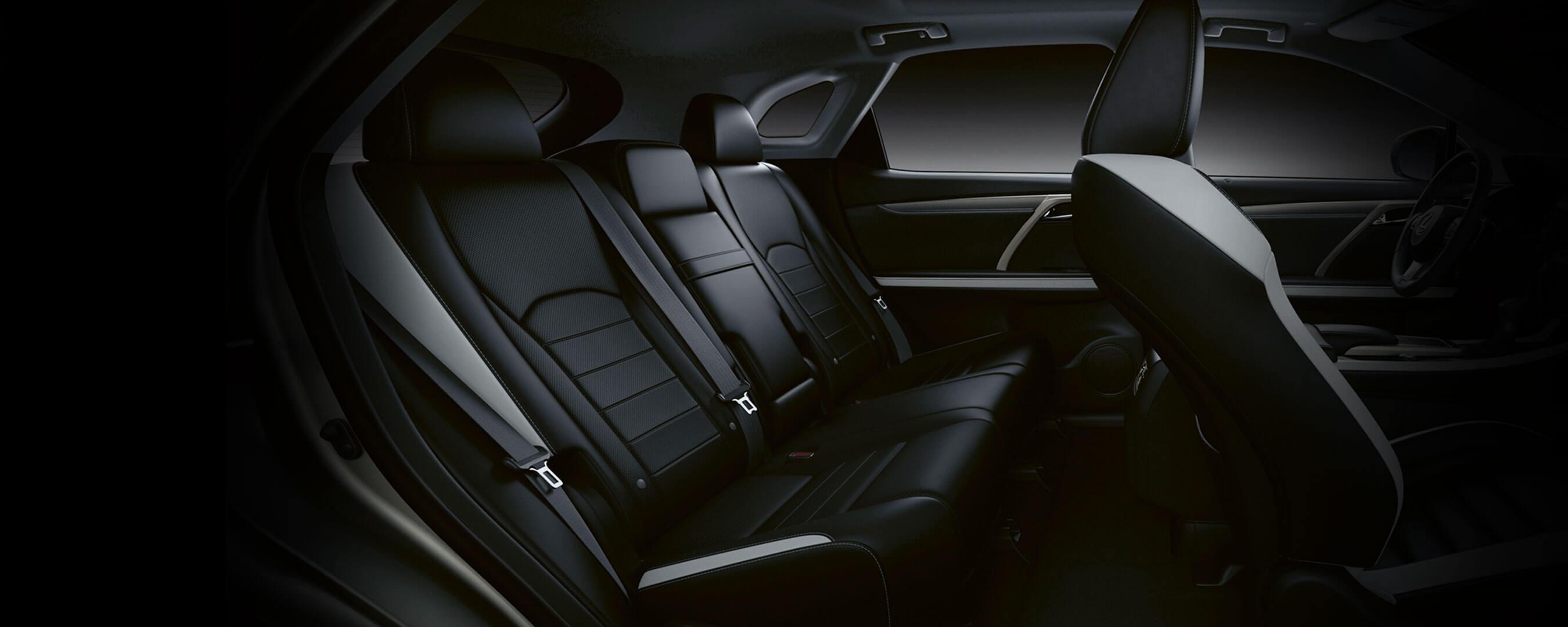 2019 lexus rx experience interior back