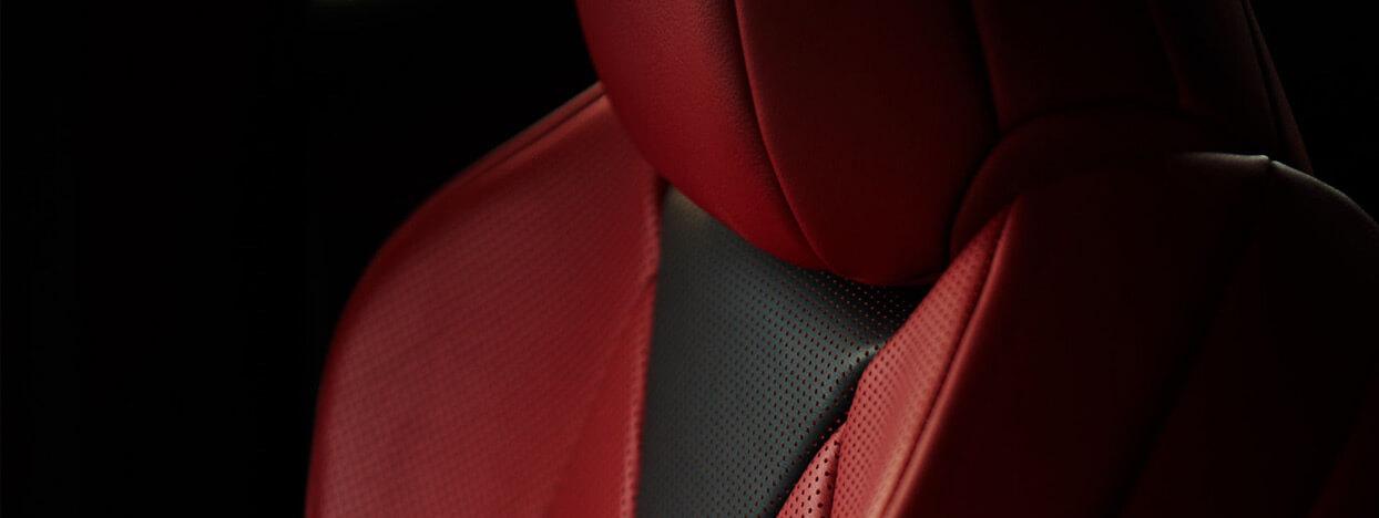 2019 lexus discover craftsmanship