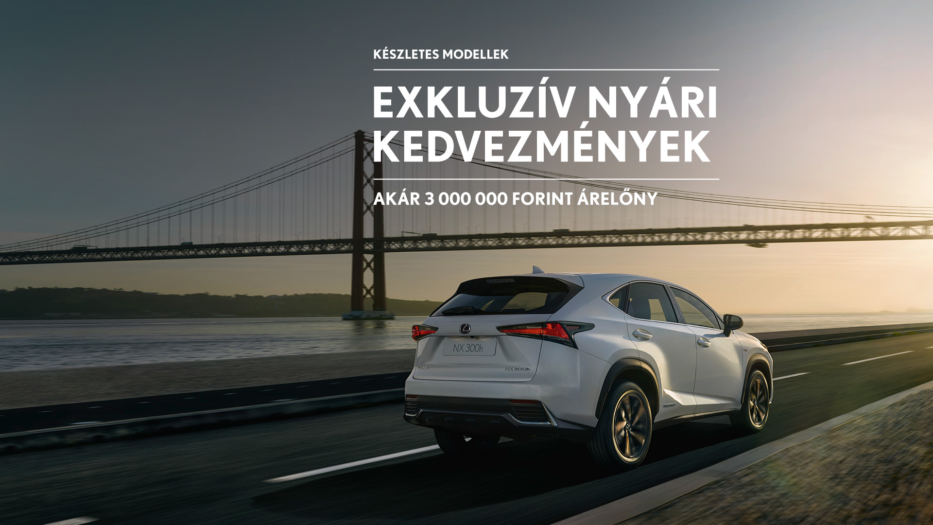 Premium SUV NX Hero