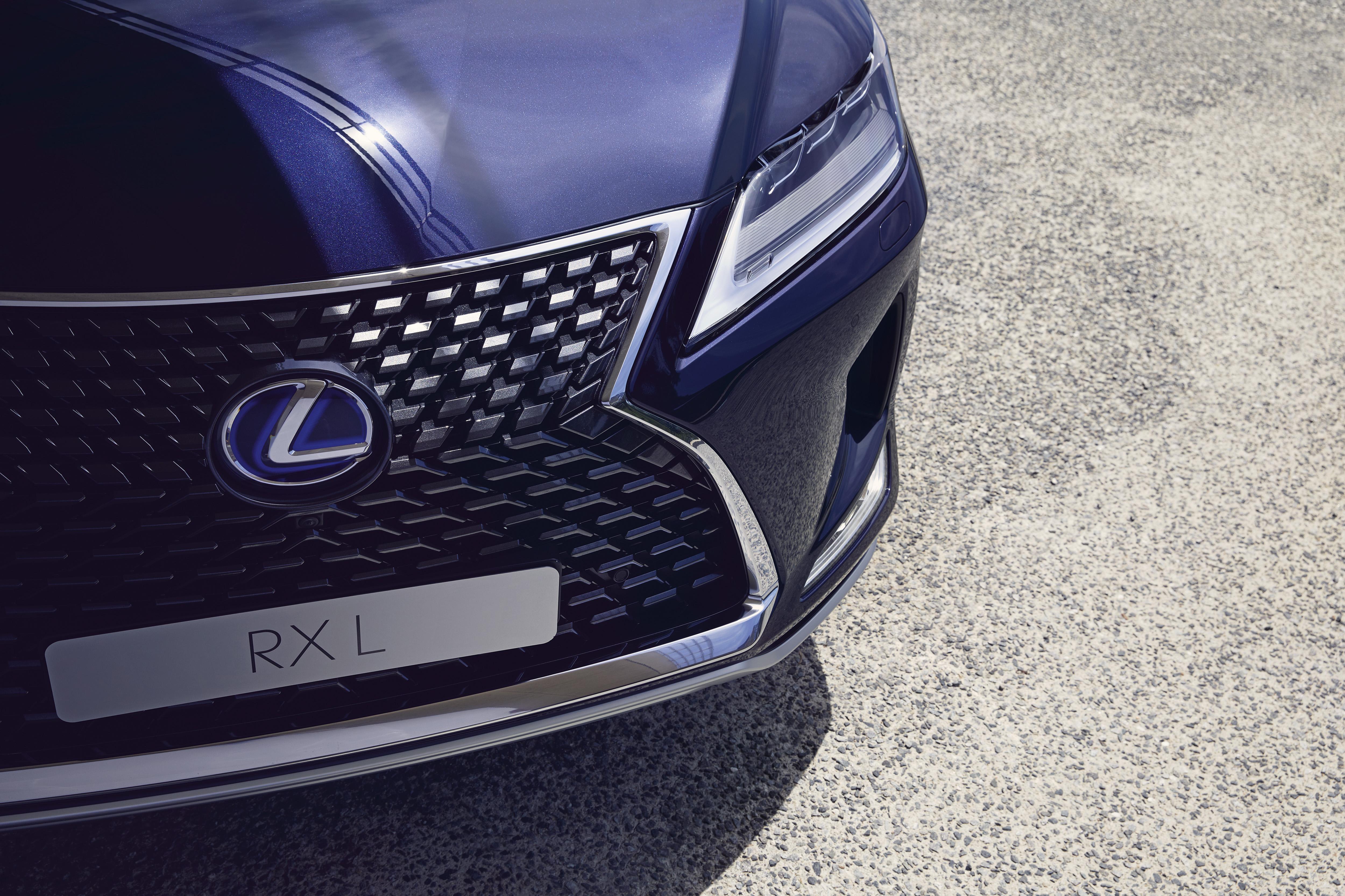 2020 rx450hl luxury 3 991429 1